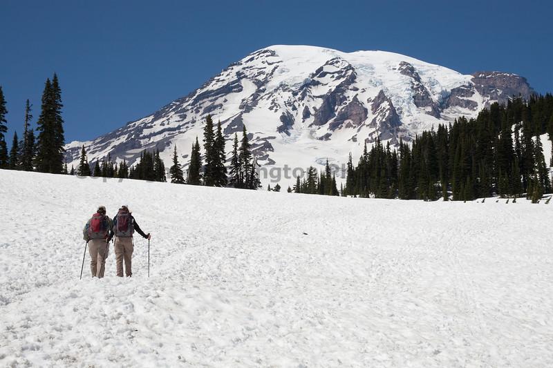 Mt Rainier Paradise Winter 150