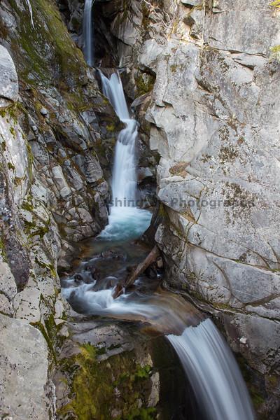 Mt Rainier Christine Falls 14