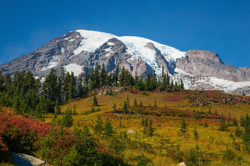Mt Rainier Paradise Autumn 104
