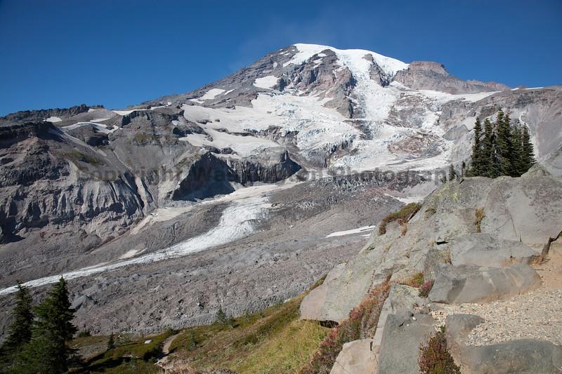 Mt Rainier Paradise Close Up 111