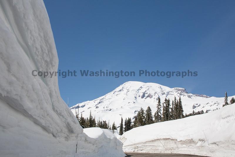 Mt Rainier Paradise Winter 117