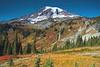 Mt Rainier Paradise 263