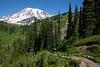 Mt Rainier Paradise 152