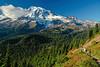 Mt Rainier Pinnacle Peak Trail 48