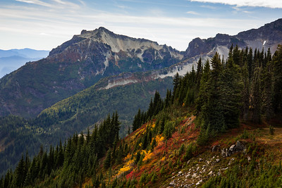 Fall colors along Mazama Ridge, looking toward the Tatoosh Range in Mt Rainier National Park