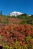 Mt Rainier Paradise Autumn 201