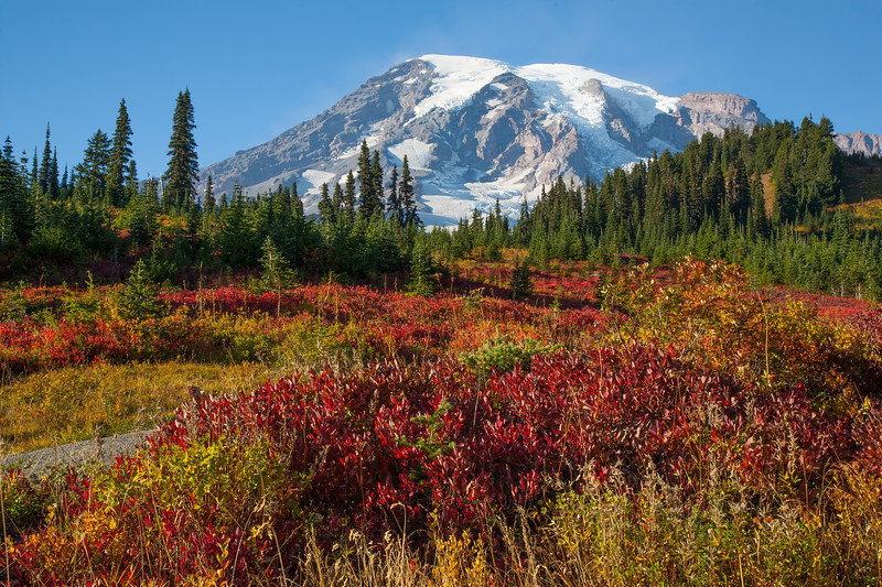 Mt Rainier Paradise Autumn 122