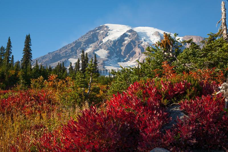 Mt Rainier Paradise Autumn 120