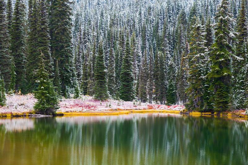 Mt Rainier Reflection Lakes Snow 102