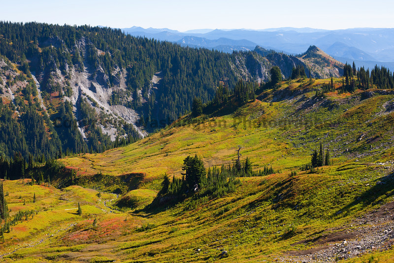 Mt Rainier Paradise Autumn 177