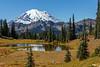 Mt Rainier Tipsoo Lake 13