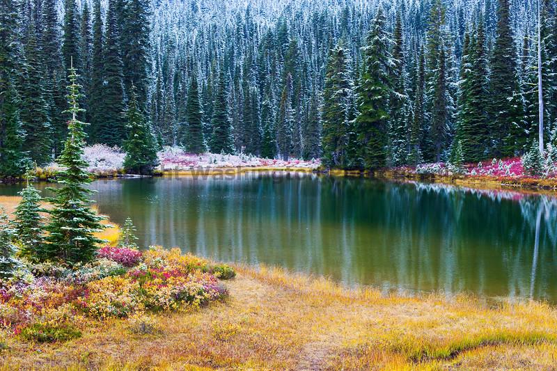 Mt Rainier Reflection Lakes Snow 110