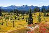Mt Rainier Paradise Autumn 210