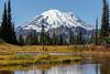 Mt Rainier Tipsoo Lake 17