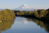 Mt Rainier Puyallup 01