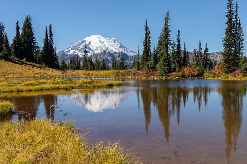 Mt Rainier Tipsoo Lake 19