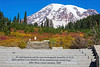 Mt Rainier Paradise Autumn 151