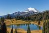 Mt Rainier Tipsoo Lake 10