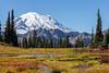 Mt Rainier Tipsoo Lake 25