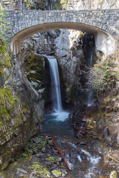 Mt Rainier Christine Falls 12