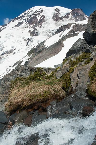 Mt Rainier Skyline 22