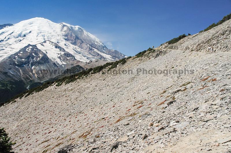 Mt Rainier Trail Burroughs Mountain 18