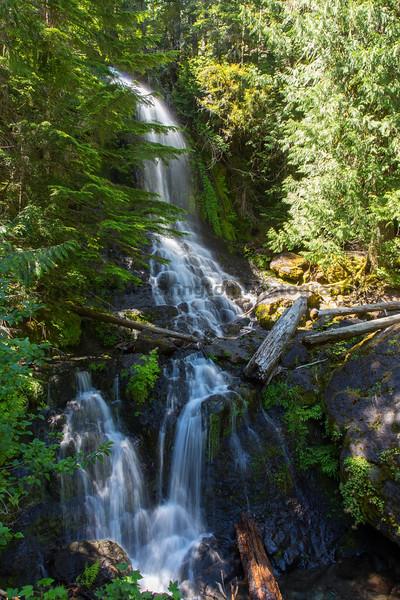 Mt Rainier Roadside Waterfall 10