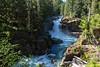 Mt Rainier Silver Falls 18