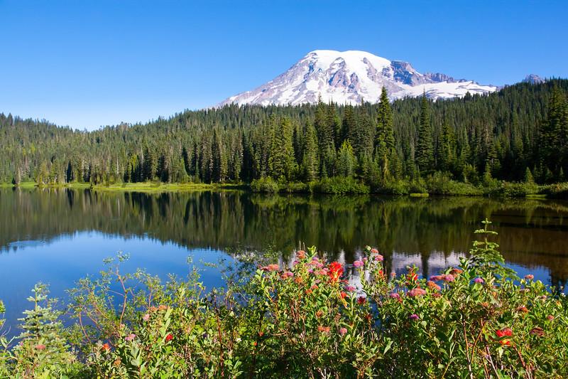 Mt Rainier Reflection Lakes 124