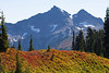 Mt Rainier Paradise Autumn 174