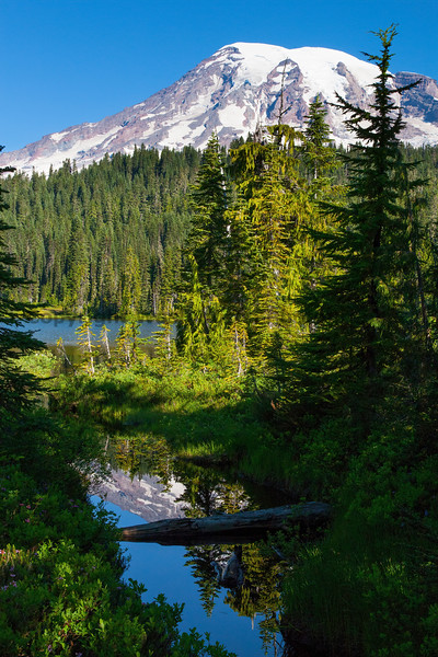 Mt Rainier Reflection Lakes 139