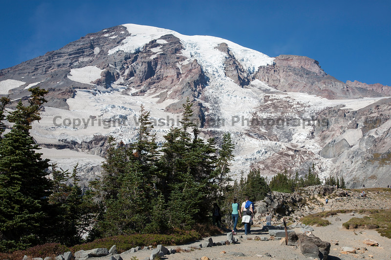 Mt Rainier Skyline Trail 114