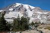 Mt Rainier Skyline Trail 114