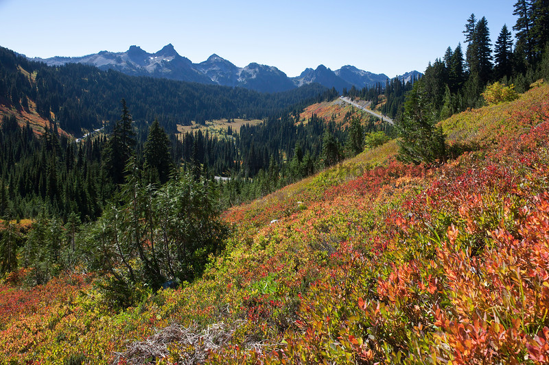 Mt Rainier Paradise Autumn 158