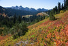 Mt Rainier Paradise Autumn 158