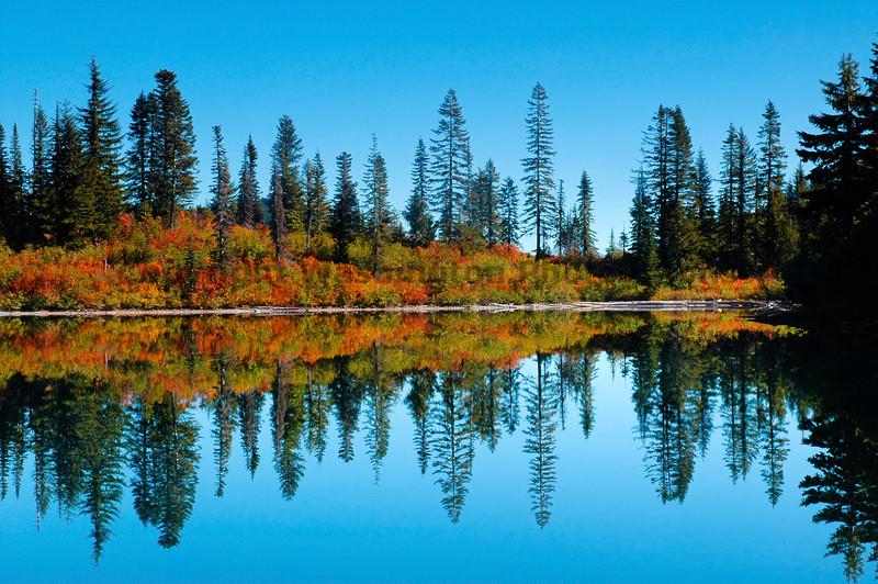 Mt Rainier Bench Lake Trail 24