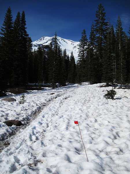 Red flag wands lead the way in snow.