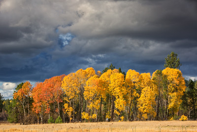 October 26 (Aspens & Big Barn) 061-Edit