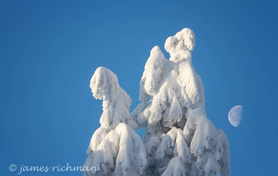 December 31 (Mt  Spokane) 004-Edit