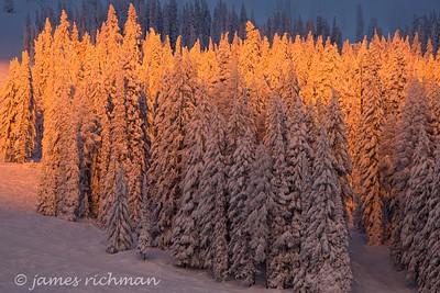 December 31 (Mt  Spokane 5D) 071-Edit