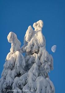 December 31 (Mt  Spokane) 003-Edit