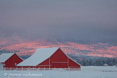 December 30 (Peone Prairie) 033-Edit