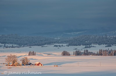 December 30 (Peone Prairie) 018-Edit