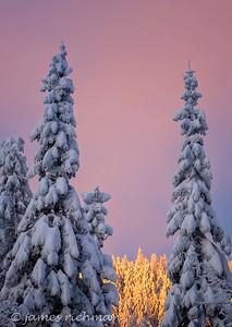 December 31 (Mt  Spokane 5D) 092-Edit