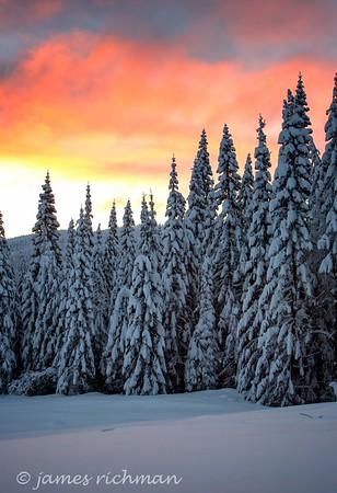 Snow on Mt. Spokane