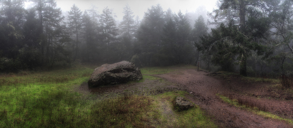 Council Rock in the center of Van Wyck Meadow (confluence of Bootjack and TCC trails).