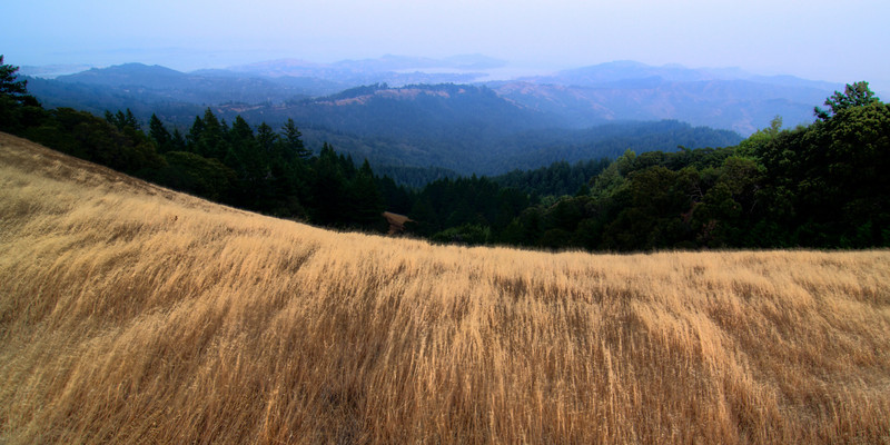 Throckmorton Ridge and Tiburon beyond on a very smoky evening (no fog) - July 24, 2008