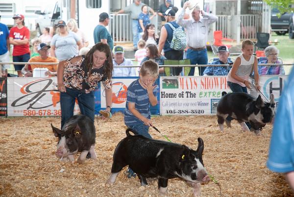 Mt. View Fair Hwy 9 Swine