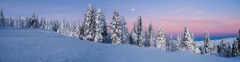 Moonset on Mt. Harrison