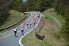Mt _Cheaha_State_Park_Al_Cycling_1000-1100_4102011_023
